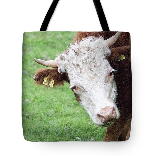 Moo Tote Bag