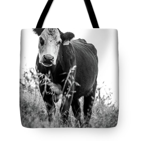 Tote Bag featuring the photograph Moo by Vincent Bonafede