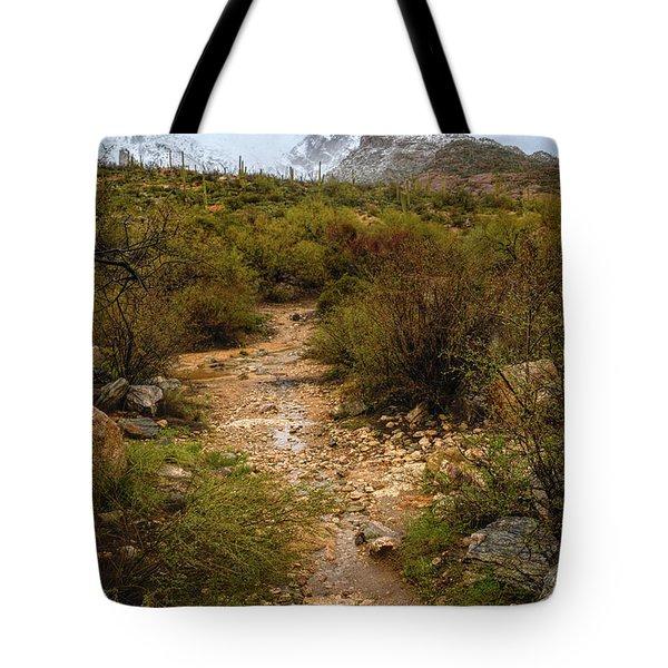 Moody Creekbed  Tote Bag