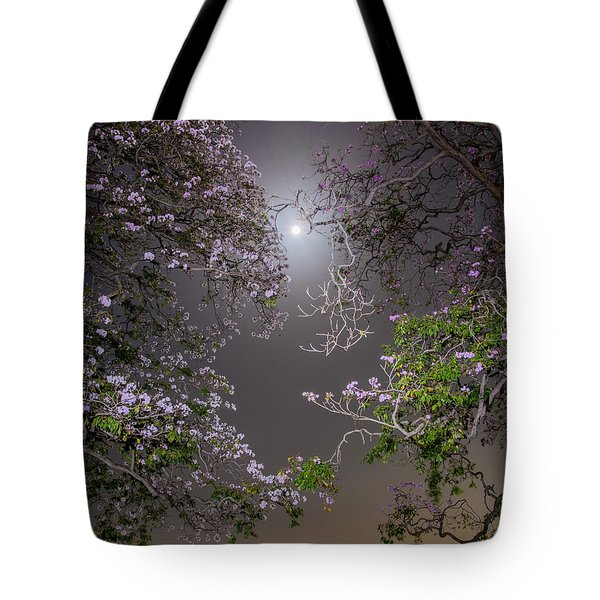 Tote Bag featuring the photograph Moonlight And Magic by Rachel Lee Young