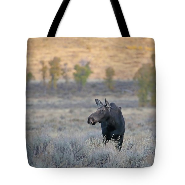 Moose Cow In Gros Ventre Tote Bag