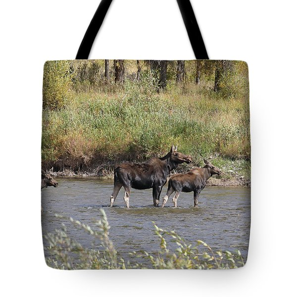 Moose With Twins Tote Bag