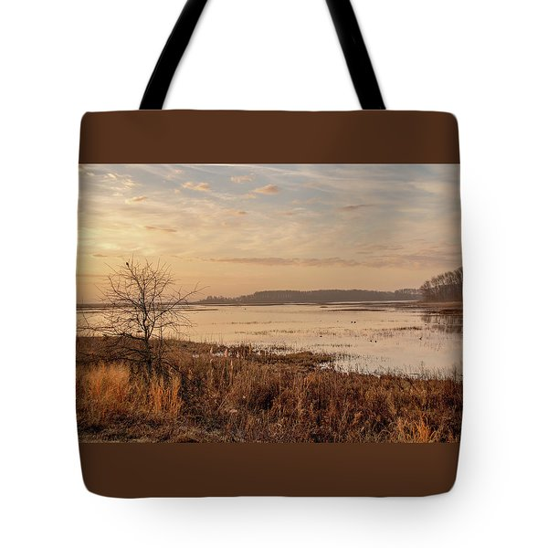 Tote Bag featuring the photograph Morning At Boombay Hook by Kristia Adams