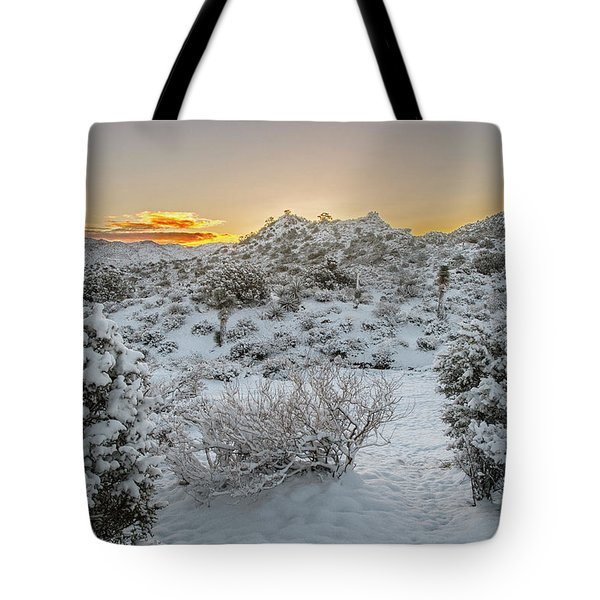 Tote Bag featuring the photograph Morning Breaks On Snow Covered Ground by Matthew Irvin
