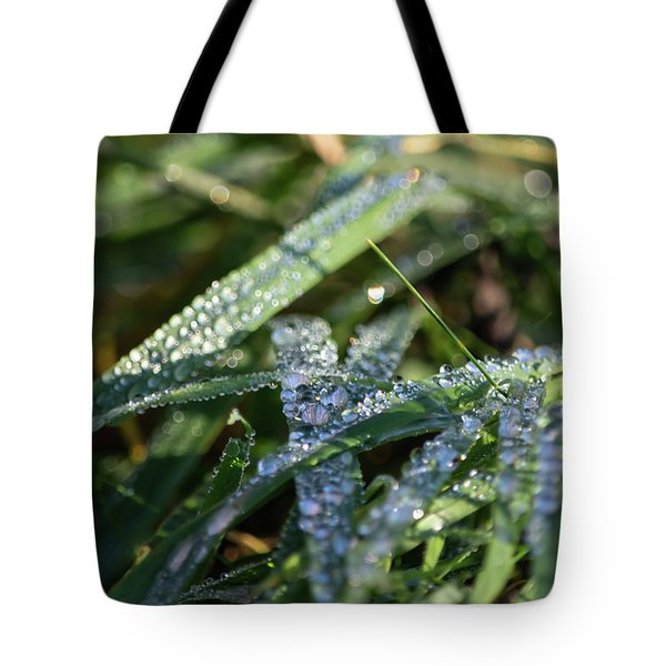 Tote Bag featuring the photograph Morning Dew On Grass by Scott Lyons
