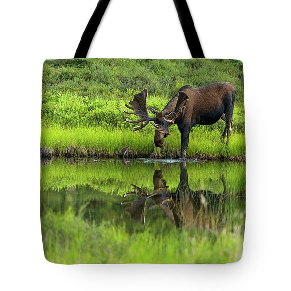 Morning Isolation Tote Bag