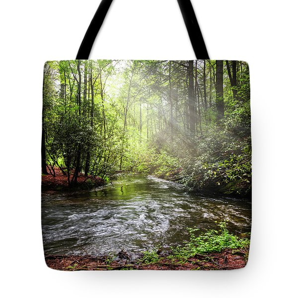 Morning Light In The Forest Tote Bag