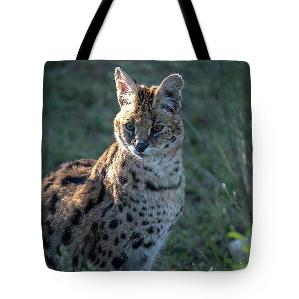 Morning Lit Serval Cat Tote Bag