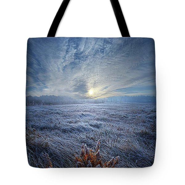 Tote Bag featuring the photograph Morning Time Blues by Phil Koch