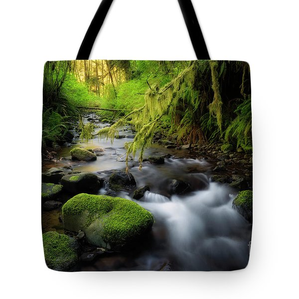 Morning Walk In The Creek  Tote Bag