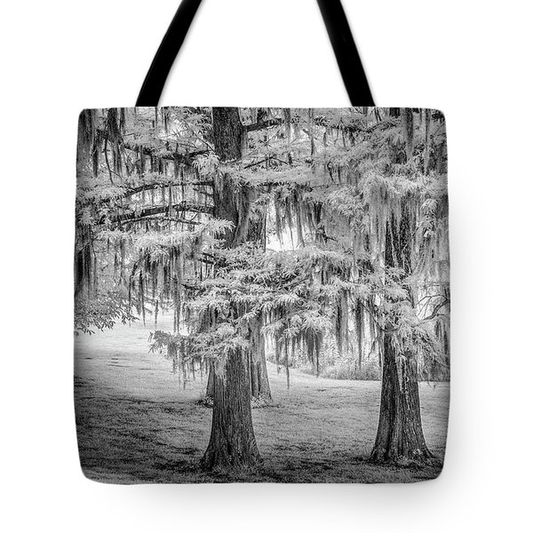 Moss Laden Trees 4132 Tote Bag