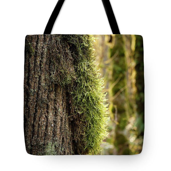 Tote Bag featuring the photograph Moss On Bark by Whitney Goodey