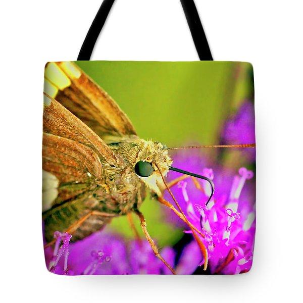 Moth On Purple Flower Tote Bag