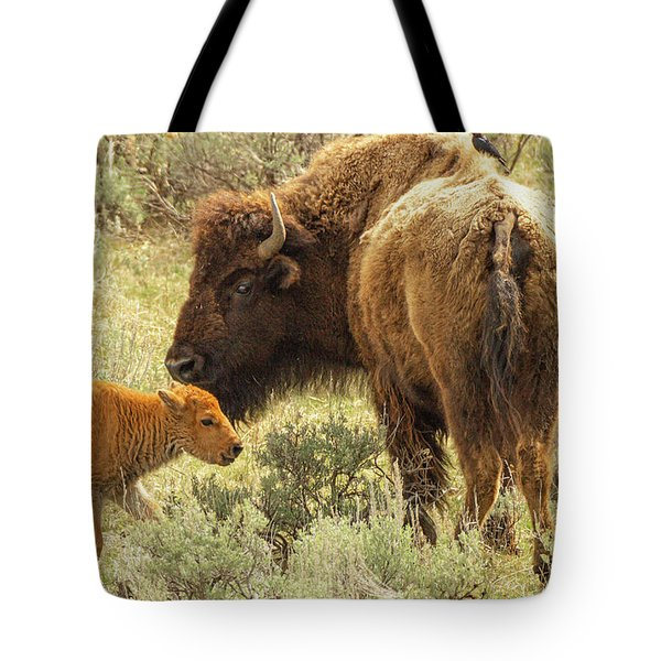 A Bison And Her Calf Tote Bag