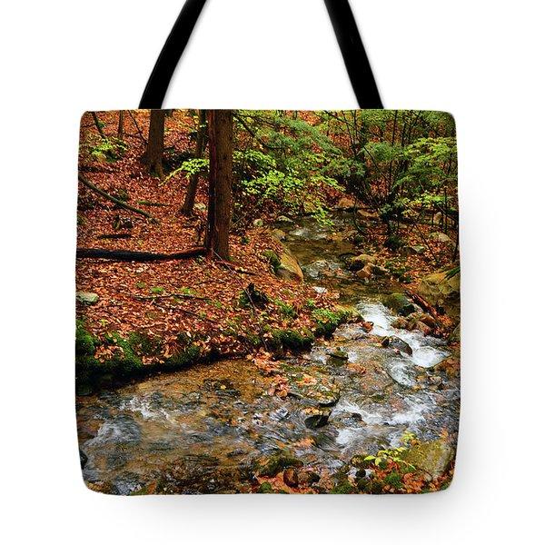 Tote Bag featuring the photograph Mountain Creek In Ma by Raymond Salani III