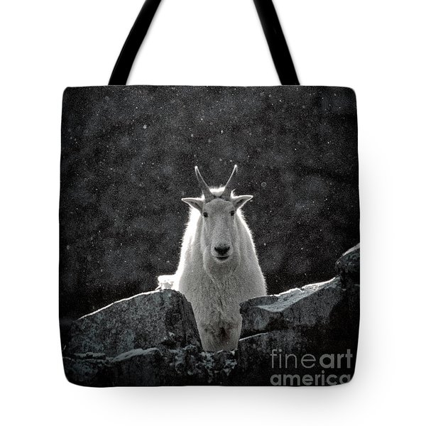 Tote Bag featuring the photograph Mountain Goat by Brad Allen Fine Art