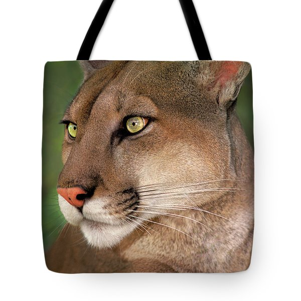 Tote Bag featuring the photograph Mountain Lion Portrait Wildlife Rescue by Dave Welling