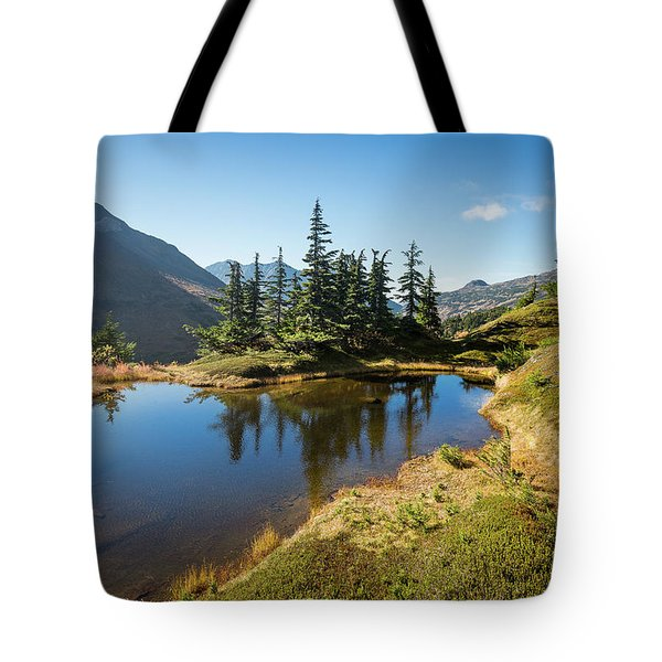 Mountain Pond Tote Bag