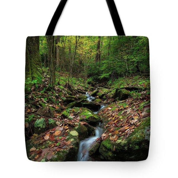 Mountain Stream - Blue Ridge Parkway Tote Bag