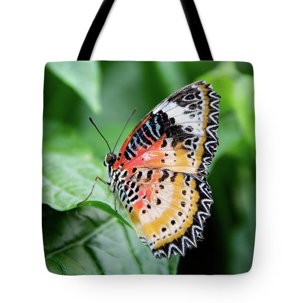 Multi Colored Butterfly Tote Bag