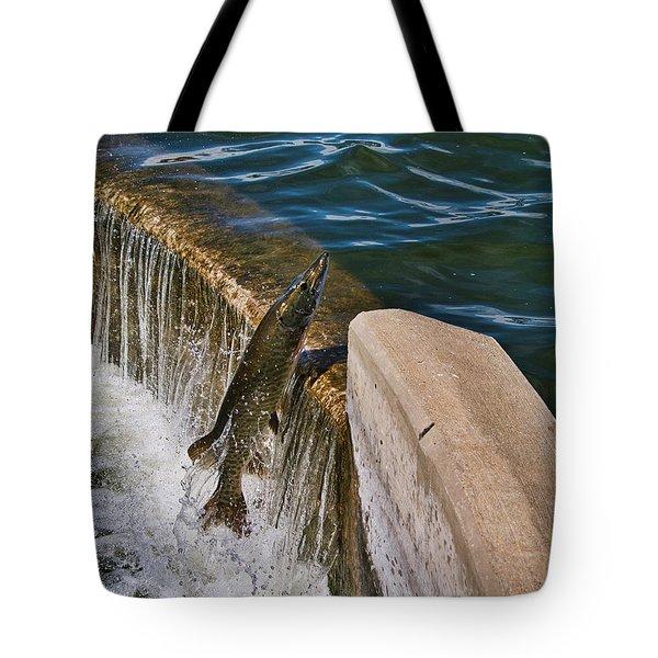 Muskie 5 - Lake Wingra - Madison - Wisconsin Tote Bag