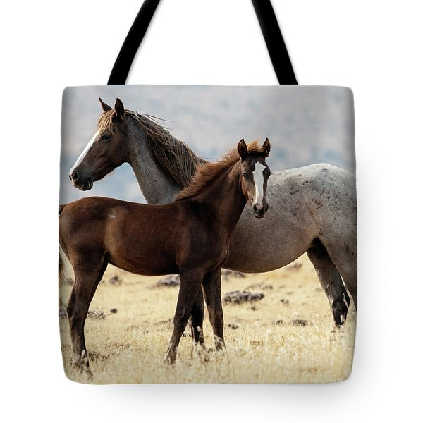 Mustang Colt And Mare Tote Bag