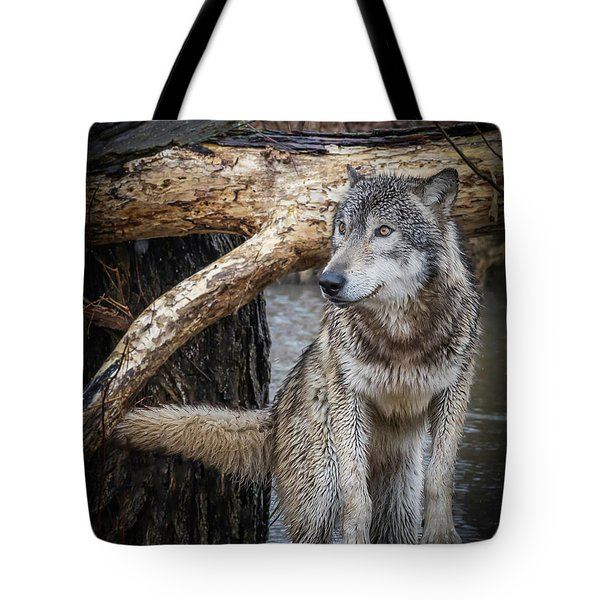 My Favorite Pose Tote Bag