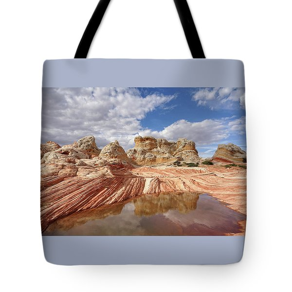 Natural Architecture Tote Bag