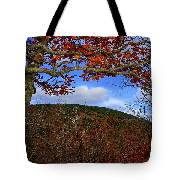 Tote Bag featuring the photograph Nature Frames Mount Greylock's Tower by Raymond Salani III