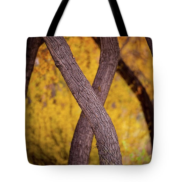 Tote Bag featuring the photograph Nature's Font by Jeff Phillippi