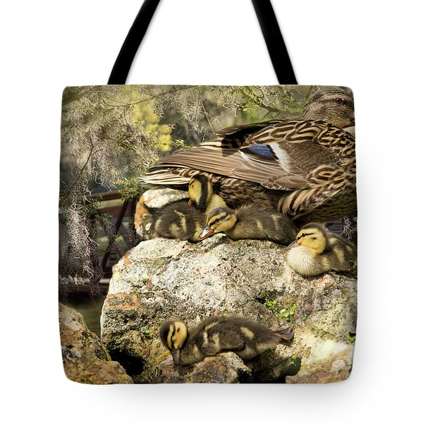 Natures Masterpiece Tote Bag
