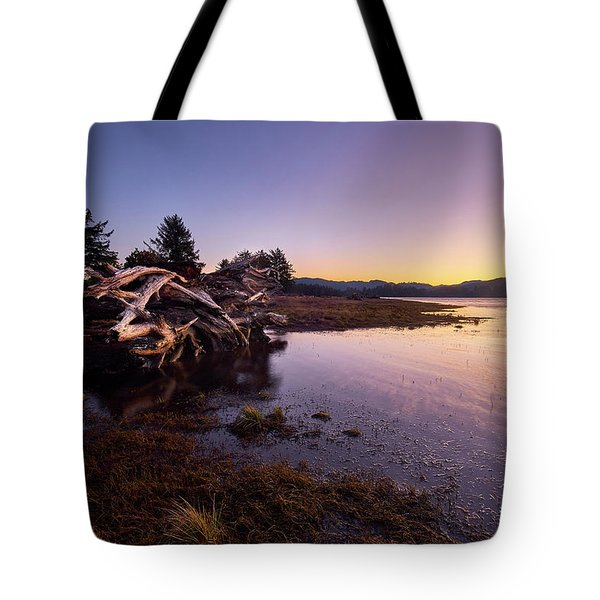 Tote Bag featuring the photograph Nehalem Bay Sunrise by Whitney Goodey