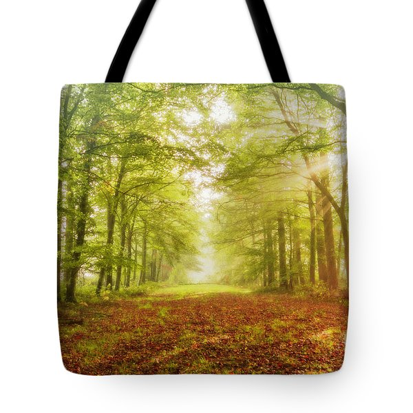 Neither Summer Nor Winter But Autumn Light Tote Bag
