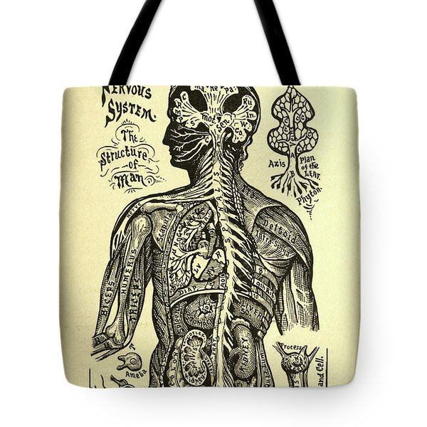 Nervous Structure Tote Bag