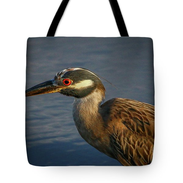 Tote Bag featuring the photograph Night Heron Portrait by Tom Claud