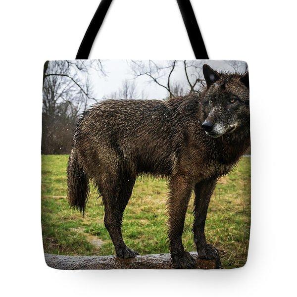 Niko Tote Bag