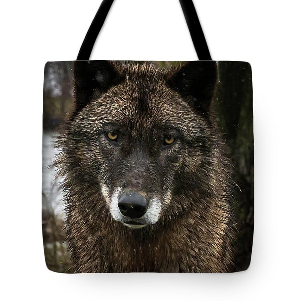 Niko Portrait Tote Bag