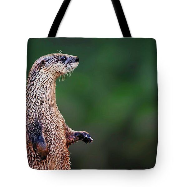 Tote Bag featuring the photograph Norman The Otter by Meta Gatschenberger
