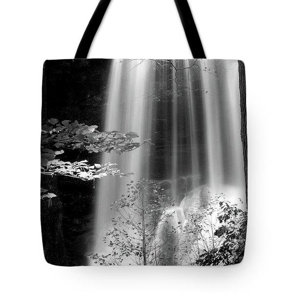 North Carolina Falls Tote Bag