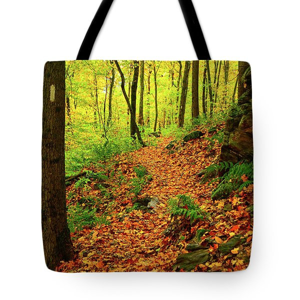 Tote Bag featuring the photograph North Side Of Mount Greylock's At 2 by Raymond Salani III