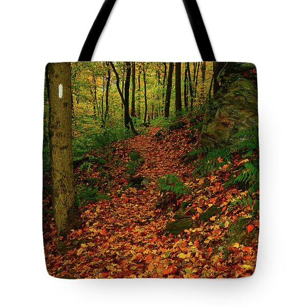 Tote Bag featuring the photograph North Side Of Mount Greylock's At by Raymond Salani III