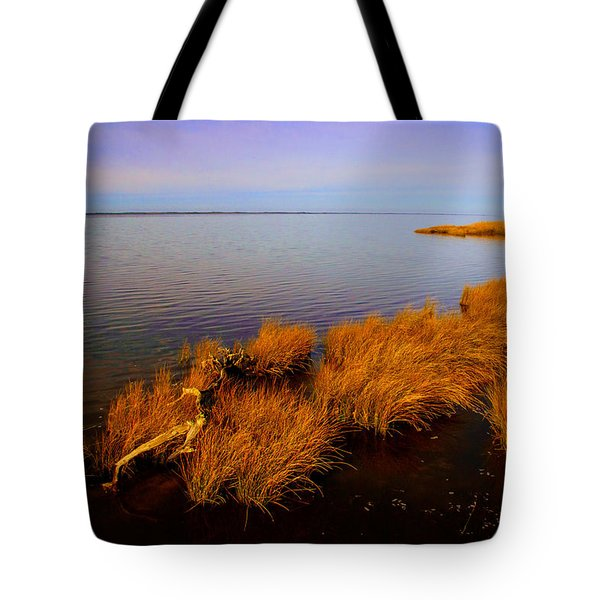 Northern Exposure  Tote Bag