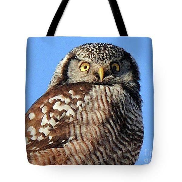 Northern Hawk-owl Tote Bag