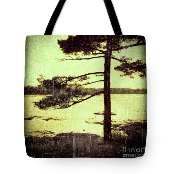 Northern Pine Tote Bag