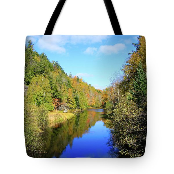 Northwoods Reflection Tote Bag