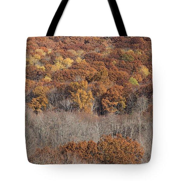 November Color - Tote Bag