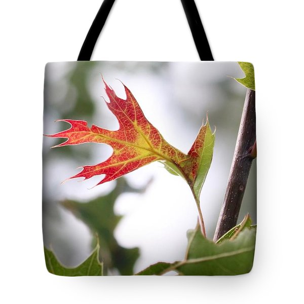 Oak Leaf Turning Tote Bag