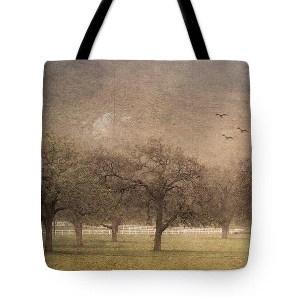 Oak Trees In Fog Tote Bag