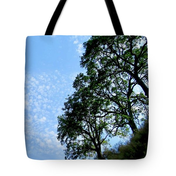 Oaks And Sky Tote Bag