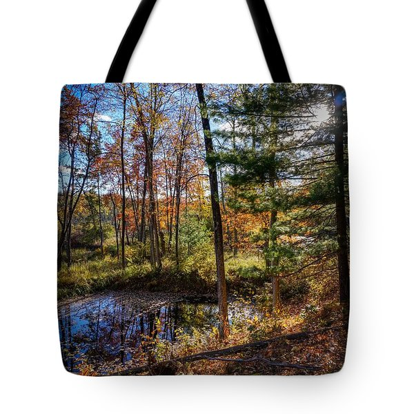 October Late Afternoon Tote Bag